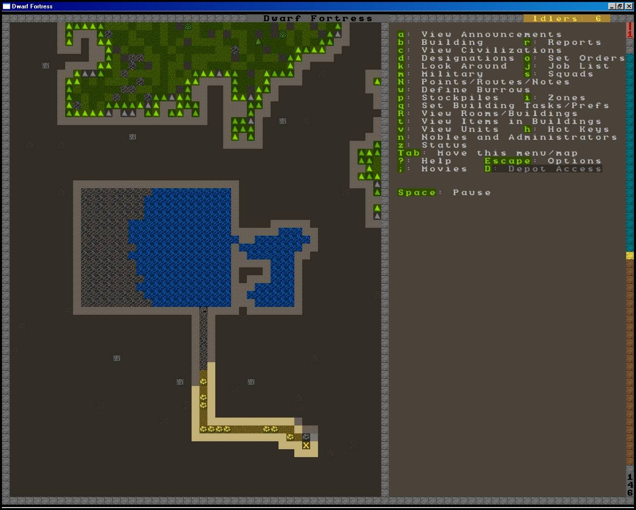 how to change level dwarf fortress